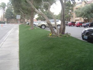 FieldTurf artificial grass used for buffer area next to parking area at apartment complex