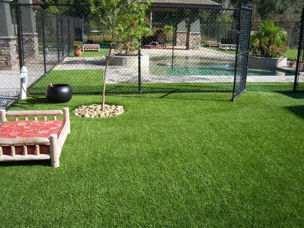 Commercial Dog Boarding Facility with FieldTurf Artificial Grass. Durable, Clean, and Hypo-Allergenic