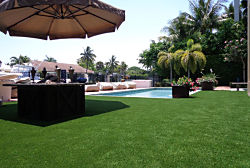 Commercial Pool & Patio Areas