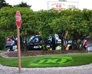 Company Logo in Landscaping FieldTurf Artificial Grass