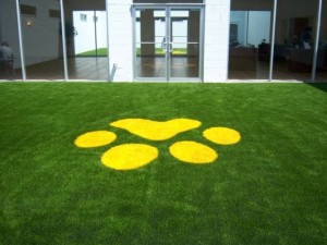 We can do fun artificial grass color designs as this dog paw for a veterinary clinic and dog care facility