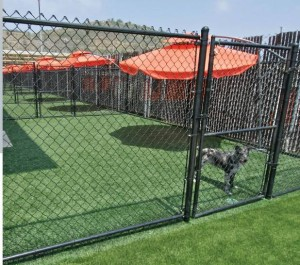 FieldTurf is always available, there is no down time for maintenance, watering or fertilizing a commercial dog training facility or dog boarding facility lawn.