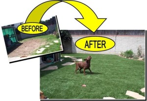 FieldTurf Artificial Lawn for Dogs Before and After photos. The 'After' photo will look exactly like that for 15 - 20 years.