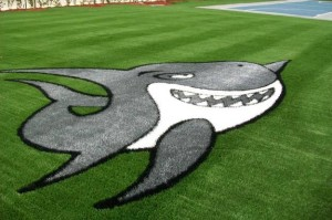 FieldTurf Artificial Turf Shark Team Logo on a field