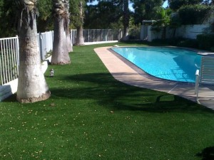 FieldTurf Synthetic Grass around Commercial Pool