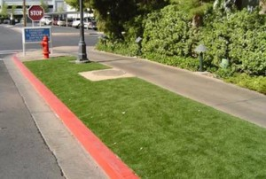FieldTurf artificial lawn next to sidewalk and street curb
