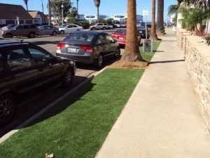 FieldTurf artificial lawn next to busy street parking and sidewalk