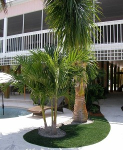 FieldTurf fake grass in landscaped pool area is ideal with no dirt and debris scattered into the pool for 15-20 years.