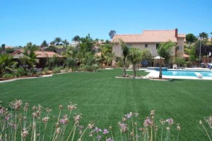 Big artificial grass lawn area by FieldTurf adjacent to community pool.