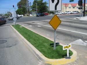Median Strip in Street with FieldTurf Artificial Grass which looks beautiful and saves maintenance costs for years.