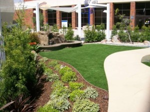 Office Complex with FieldTurf synthetic grass in the front entrance.