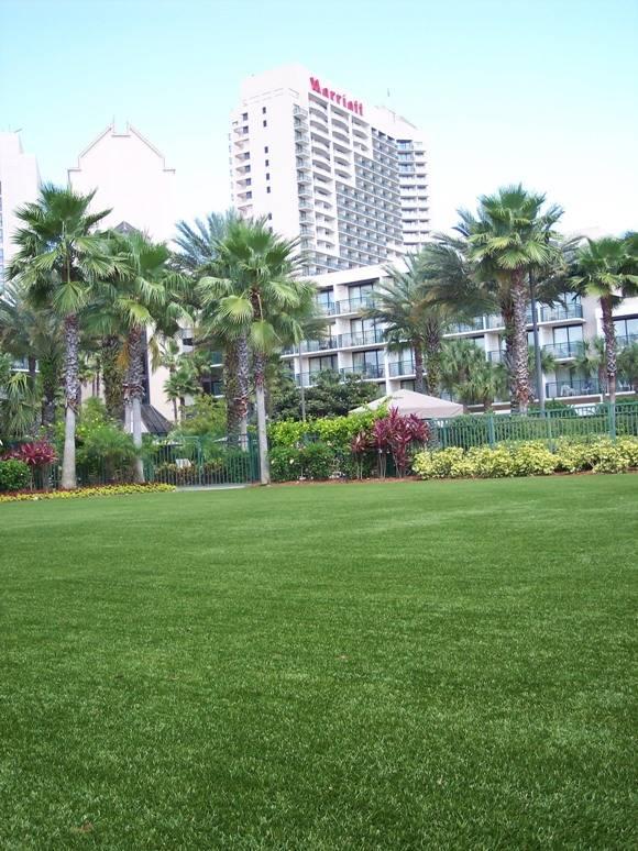 Easyturf Artificial Grass Installed Across Florida For