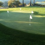 FieldTurf 4 Hole Golf Putting Green in Backyard. Fun for the whole family virtually year round.