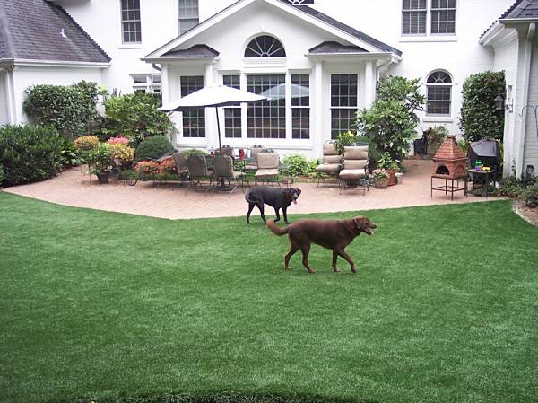Residential EASYTURF Artificial Grass Area for Dogs big or small, short or tall.