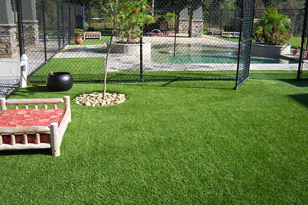 Commercial Dog Boarding Facility with FieldTurf Grass