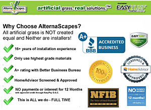 Alternascapes and Ken Holland - Your Artificial Grass Team for Florida