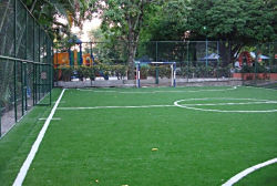 Ft. Lauderdale, Florida Sports require the best artificial turf. EasyTurf artificial grass and safety surfacing. Call Ken.